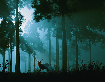 Limbo | CGi
