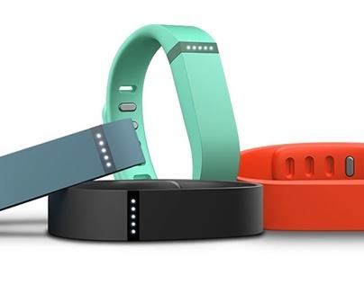 Fitbit Flyer