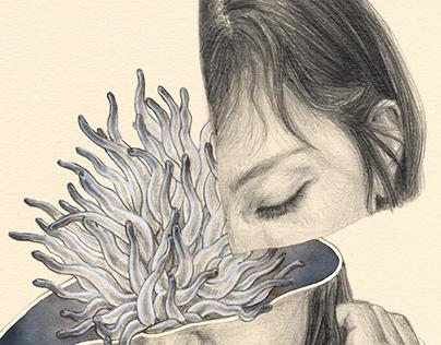 AMA O ARDE / Libro ilustrado