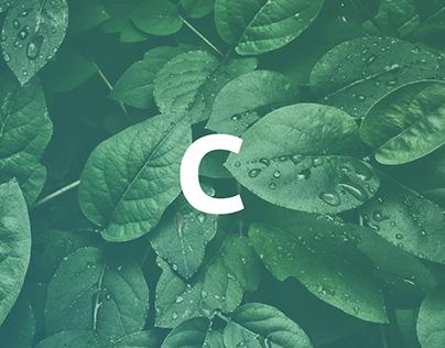Renewable Energy company Brand Design