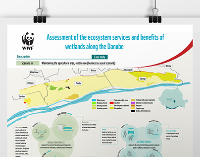Infographics for WWF Romania