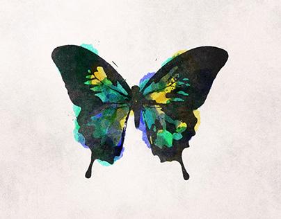 Will: Butterflies