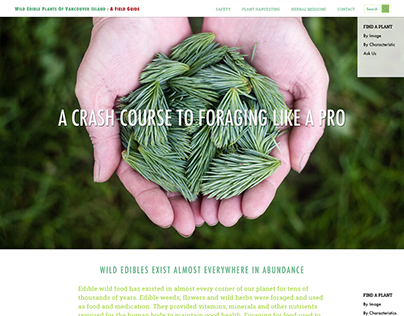 Website Design + Development: Wild Edible Plants of VI