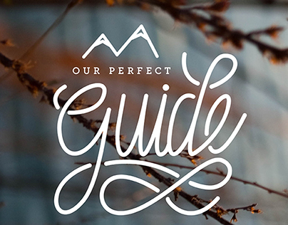 Our Perfect Guide