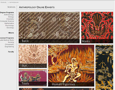 Online Anthropology Exhibit Designs