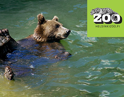 Relief for the bears in the sunshine at Helsinki zoo