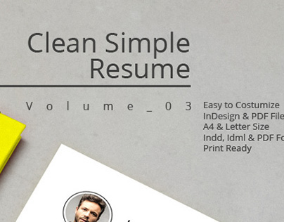 Clean Simple Resume V.03