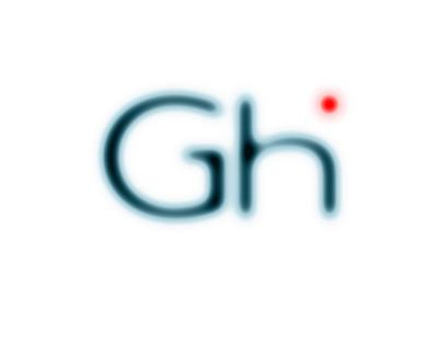 Logo & Website for Glocal Health Informatics