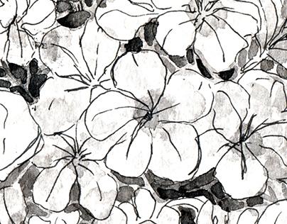 Traditional Art: Hydrangeas