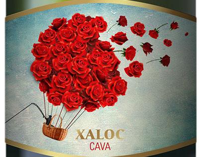 Xaloc Cava