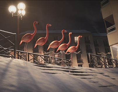 Ident France 3, ski flamants