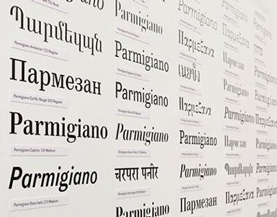 Parmigiano Type System