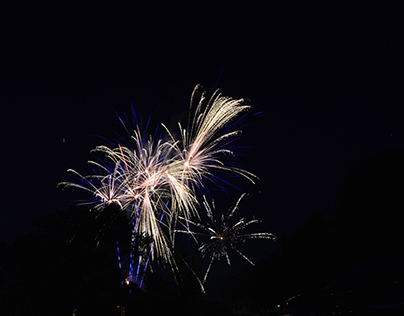 fireworks (july 4th)