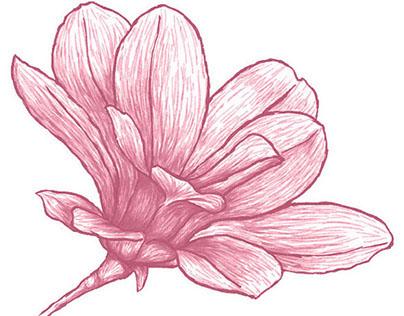 Pattern Magnolia