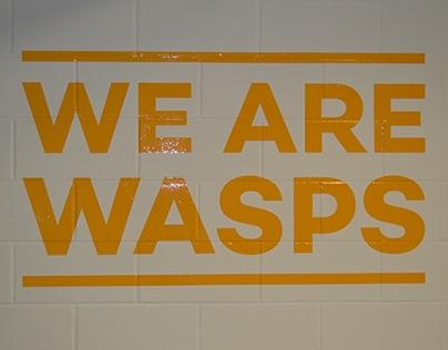 Wasps have arrived!!!