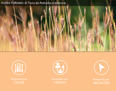 Flora turiana web portal