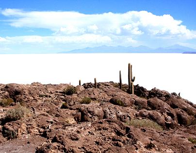Desert Exploration - Photographing Salt Flats