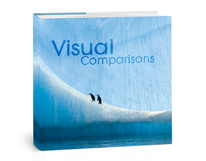 Visual Comparisons Book