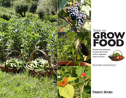 How To Grow Food