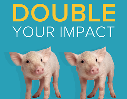 Double Your Impact Campaign