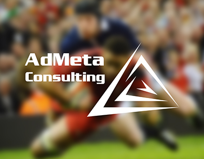 AdMeta Consulting graphic project