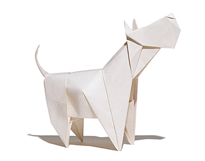 Google Origami (1 of 3)
