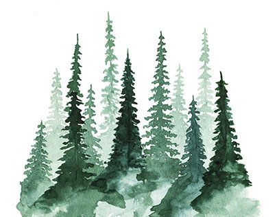 Woodland Trees 1