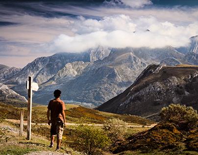De Vuelta / The Way Back