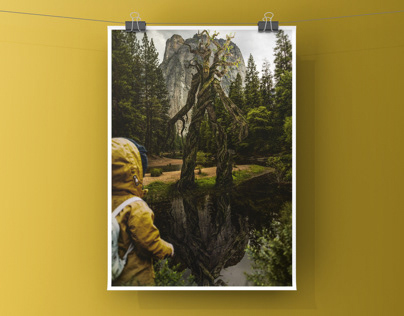 Tree Man - Photoshop Manipulation