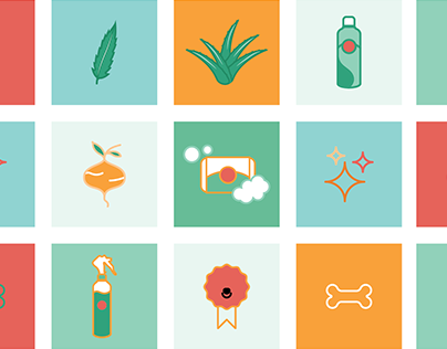 Fetch Naturals: Icon and Flyer Designs