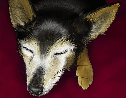 Dog Portrait Painting (Lolly)