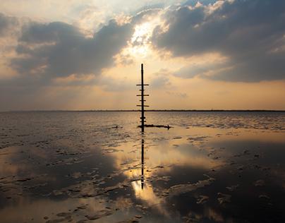 Essex: Land & Seascapes