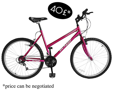 Used Bloom Mountain Bike for Sale
