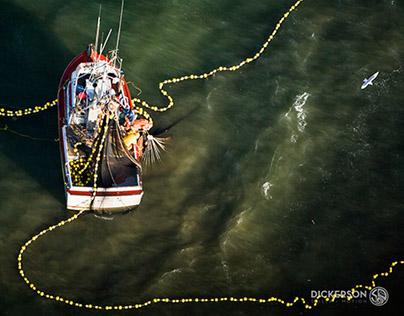 Aerial Portfolio 2014