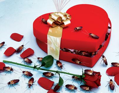 Valentine Flyer Vol 2