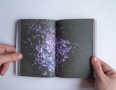Spurensicherung // exhibition catalog //