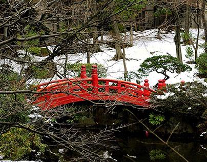 TOKYO - Jardín Antiguo Yasuda - 旧安田庭園