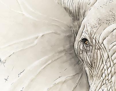 the Elephant's Wisdom