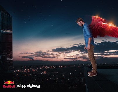 RED BULL CAMPAIGN