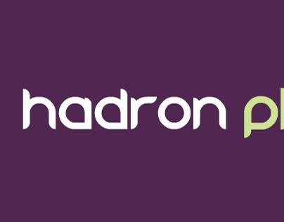 Hadron Physics (2014)