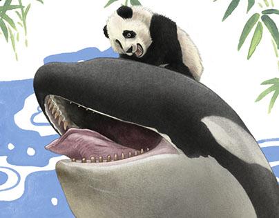 Captives: Orcas and Pandas