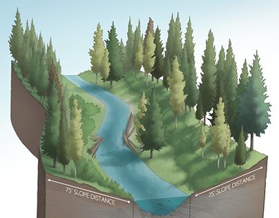 2014 Technical Illustrations