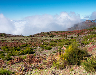 Madeira above the clouds