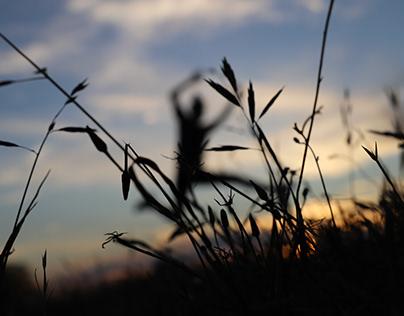 Landscape/Subject Photography