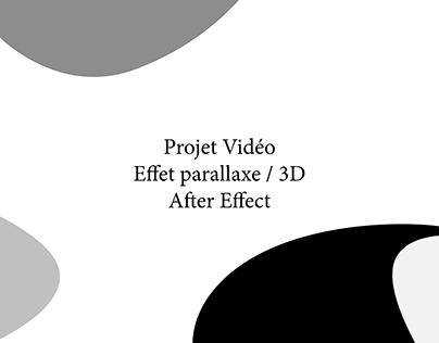 Projet 1er année vidéo avec effets