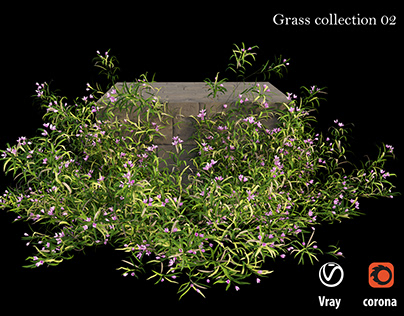 Grass collection 02