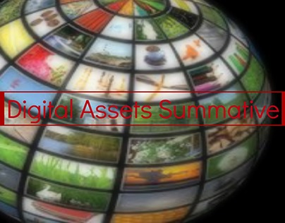Digital Assets Summative