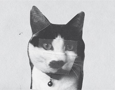 Anti-Cats Soapbox