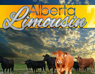 2013 Alberta Limousin Association Calendar