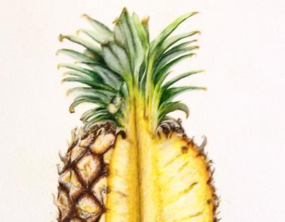 Peinture ananas